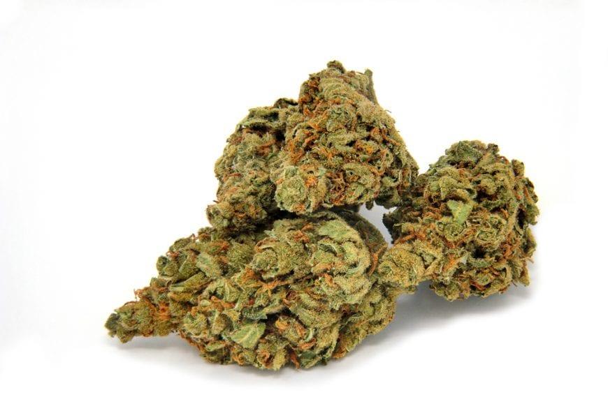 Cannabis Bud against white background