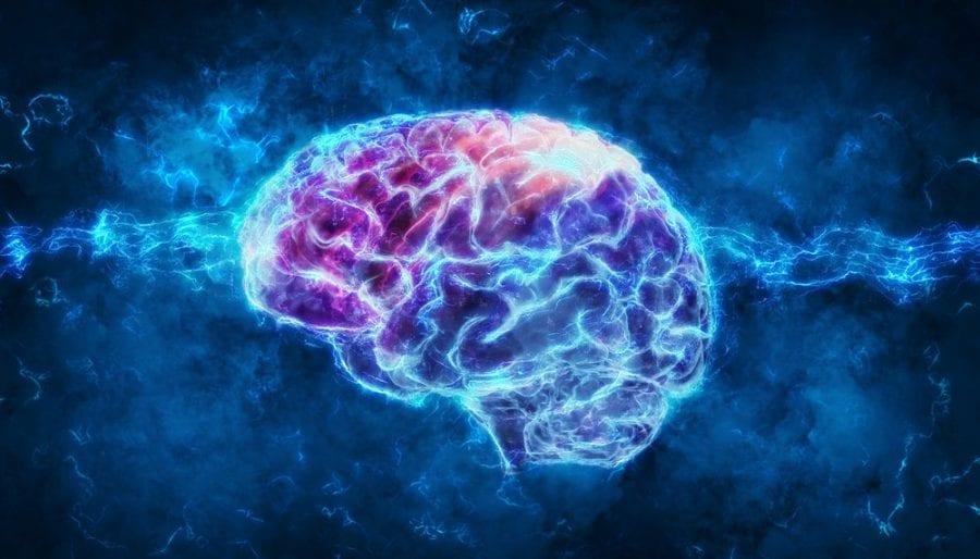 cannabis, medical cannabis, brain, cognitive impairment, concussion, CBD, THC, cannabinoids, endocannabinoid system, cognitive function