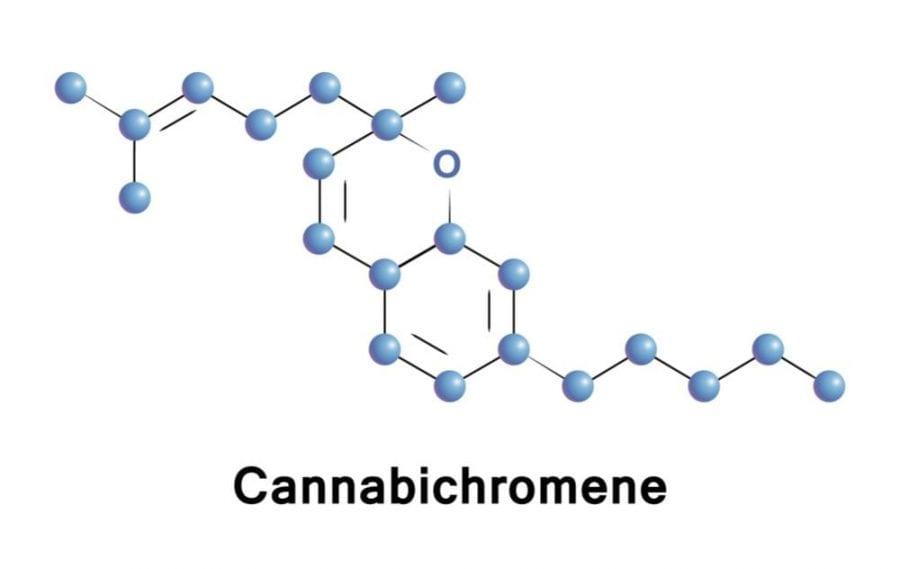 cannabichromene, cannabis, medical cannabis, fungal infection, cannabinoids, foot fungal infection, THC, CBD, legalization, prohibition, Canada, USA