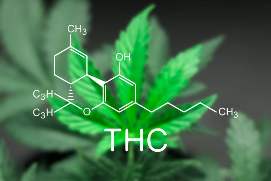 THC chemical structure over cannabis leaf