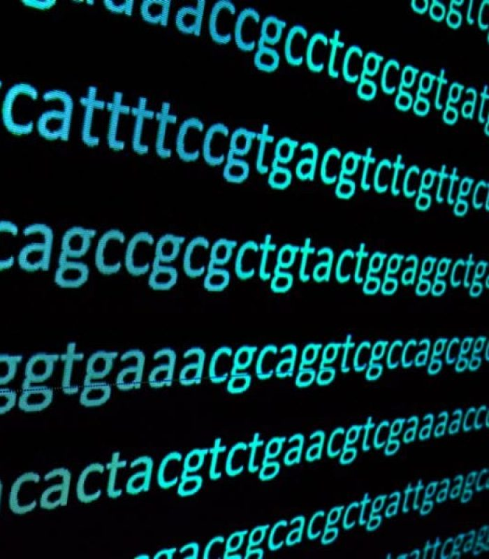 Just a Small Change in Your DNA Code Will Change How Cannabis Works For You