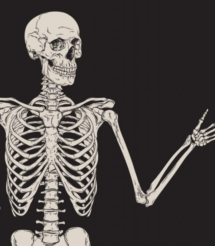 Can CBD Make Your Skeleton Stronger?