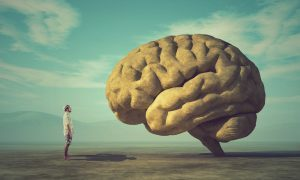 CB3 receptor represented by a man standing before a large brain in wonder
