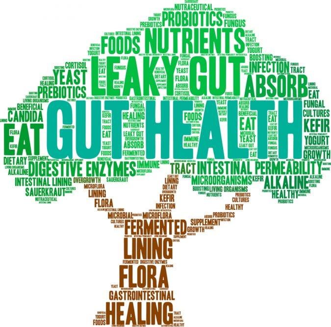 Leaky Gut word tree