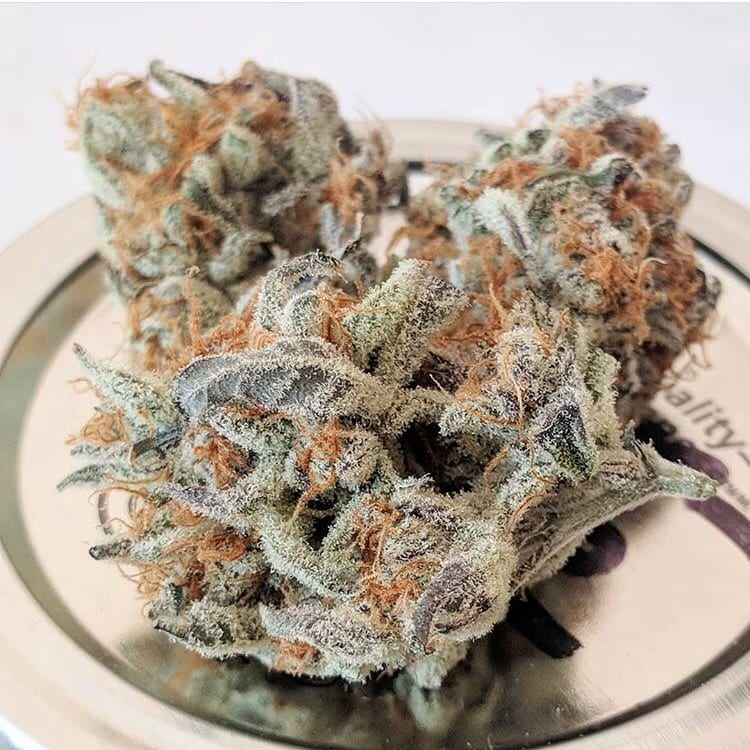 Strain Round Up: Which Are Best for Anxiety and Depression? - RxLeaf
