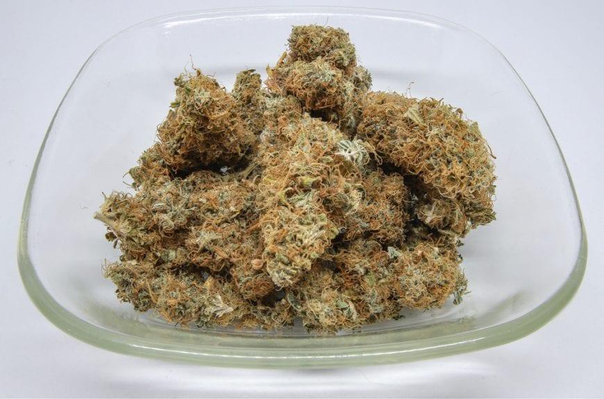 Cannabis Buds in Glass Bowl humulene