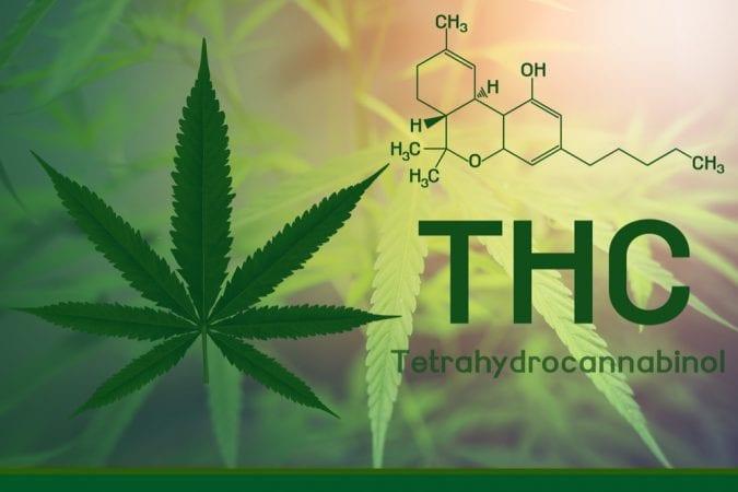 THC chemical formula
