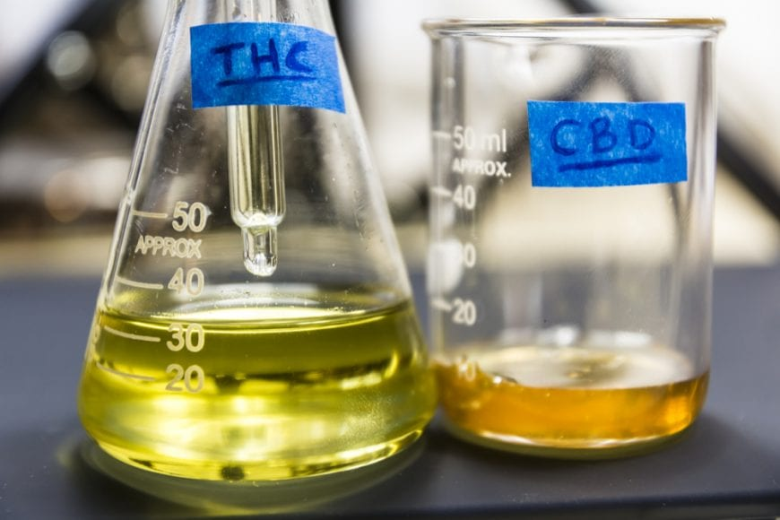 THC and CBD oil in Beakers dose