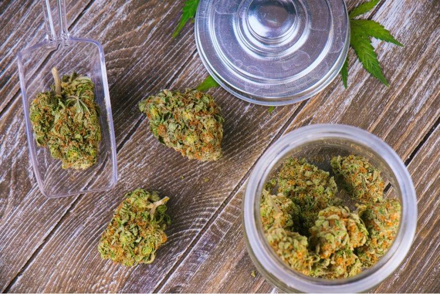 cannabis buds inside glass jar and sitting on wood plank