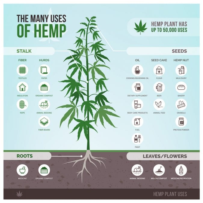 Uses of hemp meme