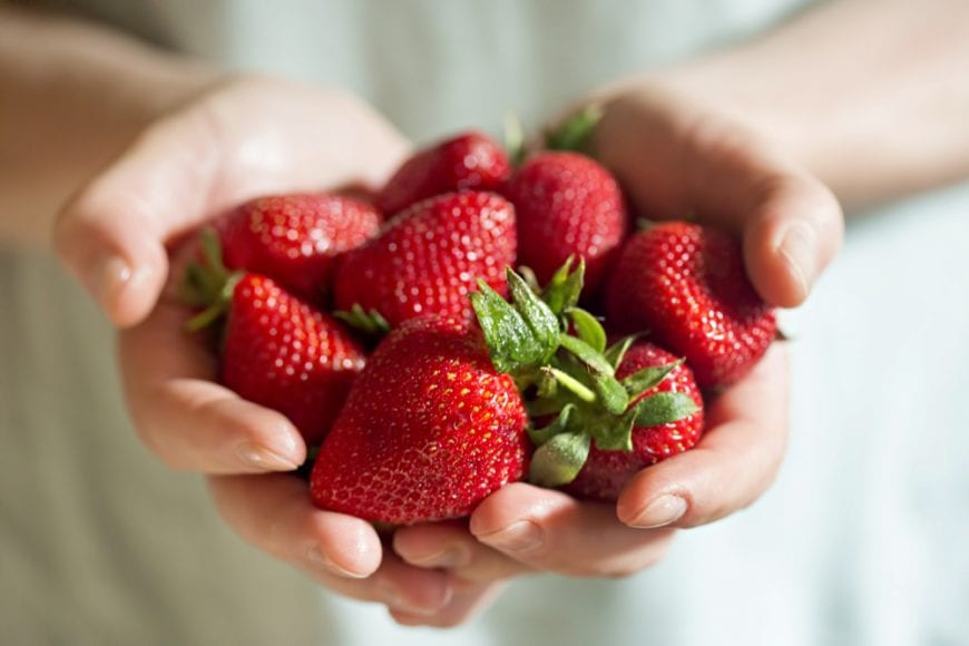 Strawberries being held in a woman's hands close up