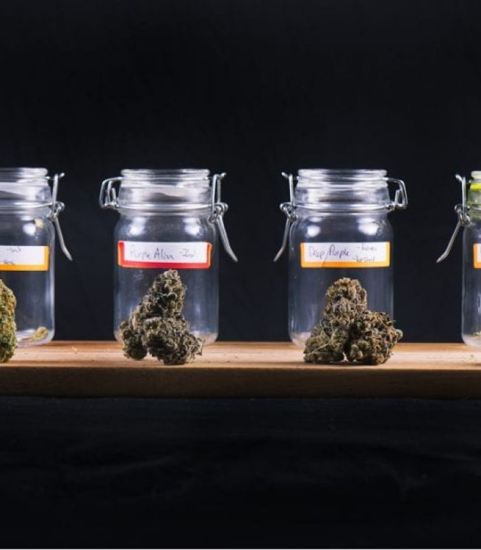 Black Market Cannabis Will Never Die. Or Will it?