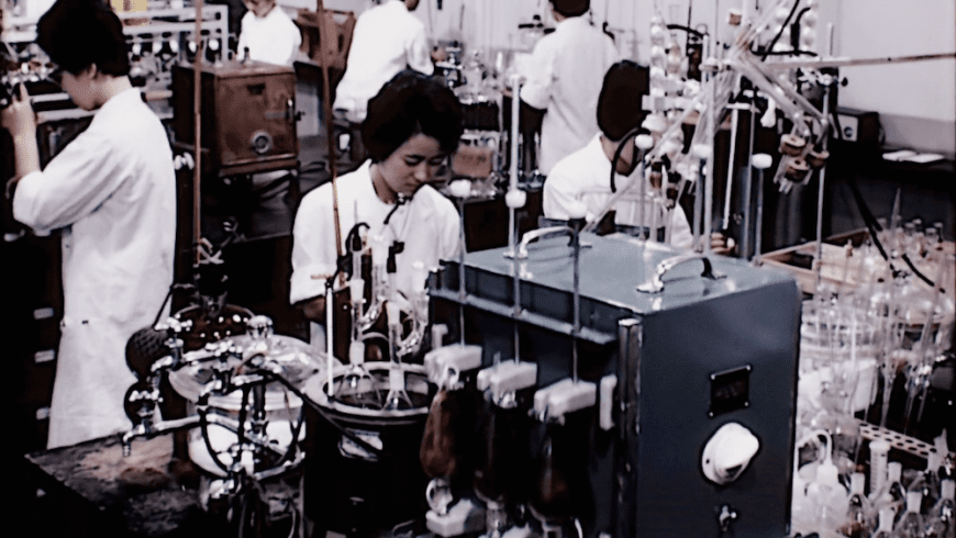 laboratory, 1970s, brain cells, brain cell damage, cannabis, cannabinoids, experiment, THC, CBD, controversy