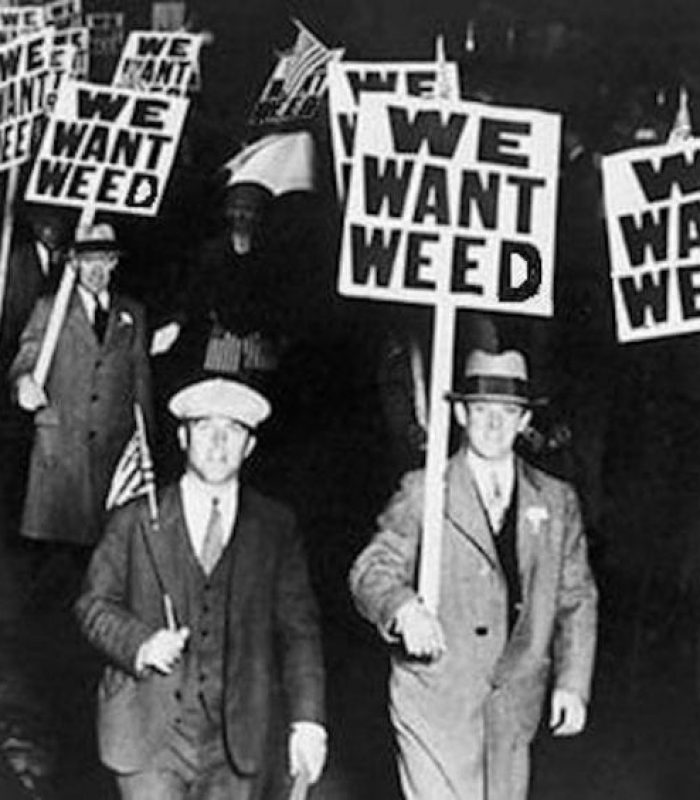 Prohibition in America: From Alcohol to Cannabis? Will We Return to the 'Rum-Runner' Days?