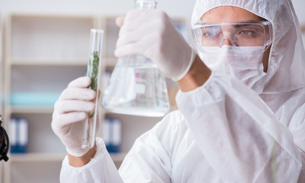 sativex patent represented by male researcher holding up a beaker