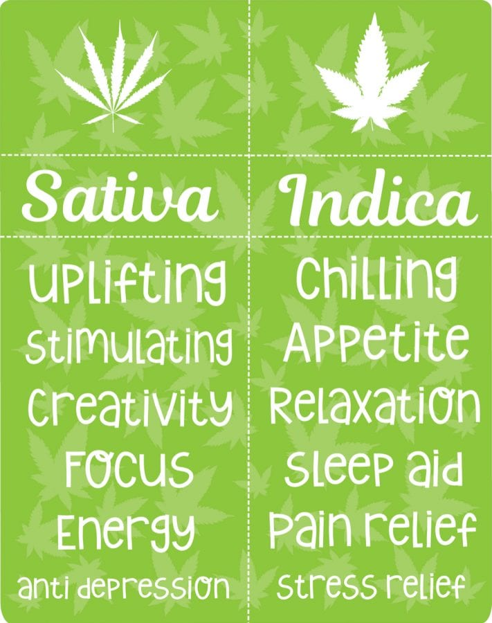 cannabis, sativa, indica, hybrid, energizing, relaxing, strains, medical cannabis, budtenders, dispensaries, CBD, THC