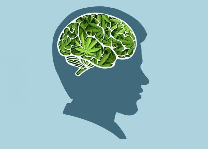 cannabis, TS, OCD, anxiety, Tourette's Syndrome, cannabinoids, THC, CBD, insomnia, medical cannabis