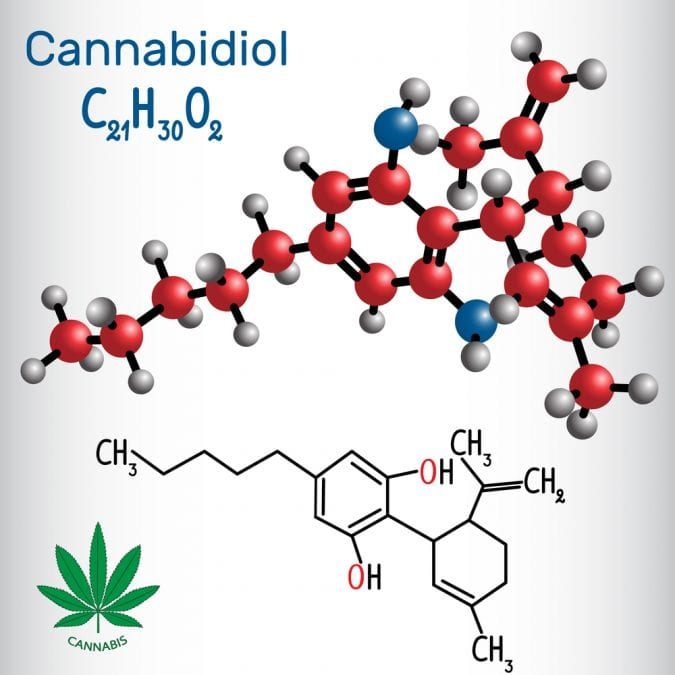 cannabis, CBD, CBD oil, legalization, Canada, autism, epilepsy, USA, Israel, medical studies, research