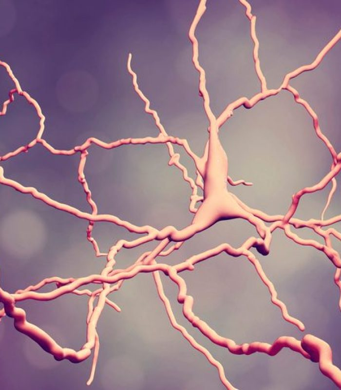 Latest Research on Cannabis and Neurodegenerative Disease
