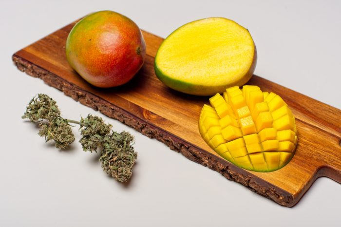 myrcene represented by mango and cannabis buds
