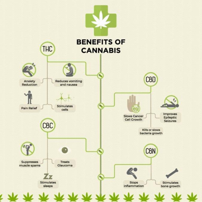 cannabis, cannabinoids, medical cannabis, recreational cannabis, CBD, THC, legalization, cannabis benefits, alcohol, intoxication, health risks