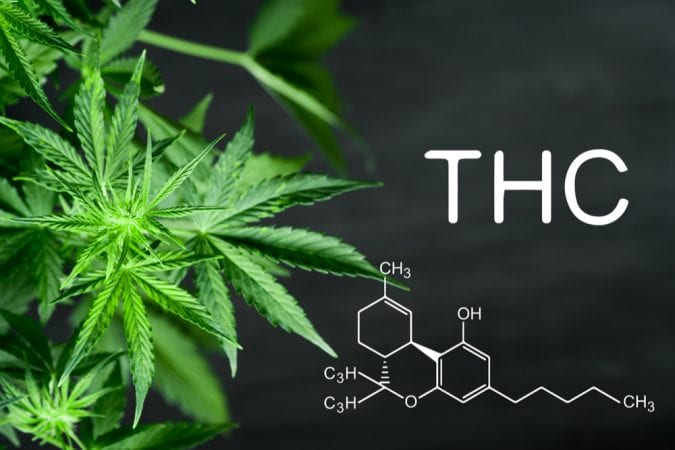 cannabis, THC, tolerance, TestMyTolerance, legalization, intoxication, DNA, DNA testing, research, medical cannabis