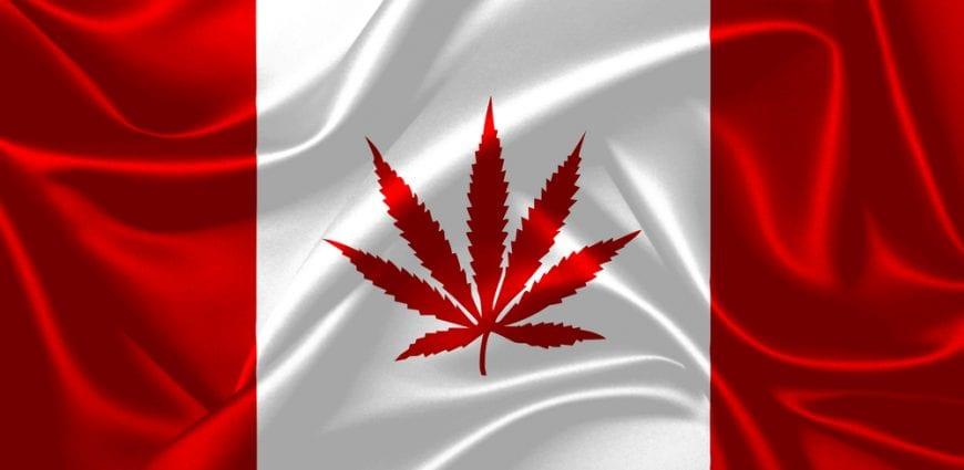 cannabis, Canada, USA, hemp, hemp plants, trade, legalization, agriculture, farmers, hemp products