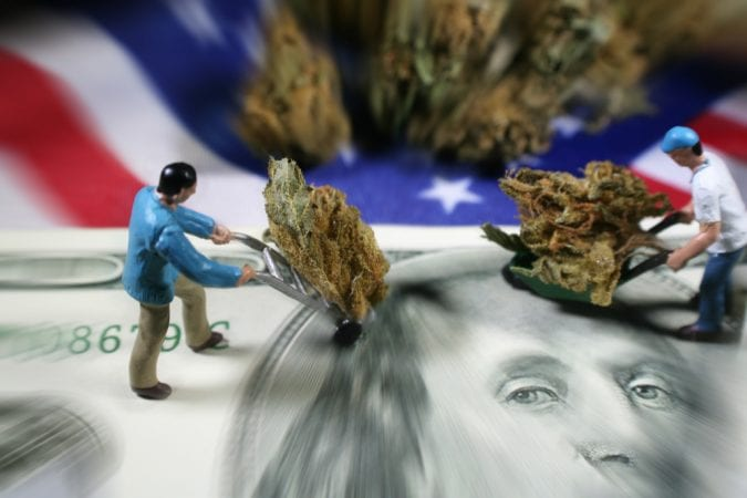 cannabis, economy, jobs, medical cannabis, legalization, research, USA, federal laws, federal government, prohibition, THC, cannabinoids