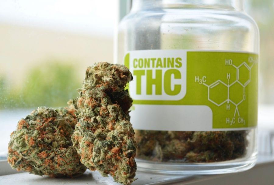cannabis, medical cannabis, legalization, prescription, medication, medicine, USA, Canada, healthcare, Obamacare