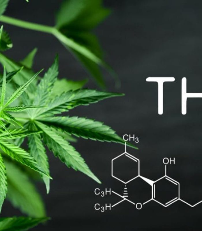 This Genetic Test Will Tell You Which Strain is Your Match