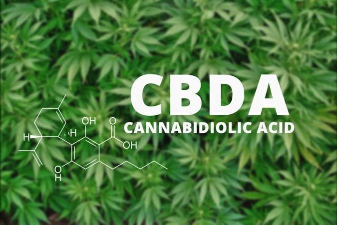 cannabis, CBD, CBDA, THC, cannabinoids, endocannabinoids, nausea, pregnancy, mothers, children, research