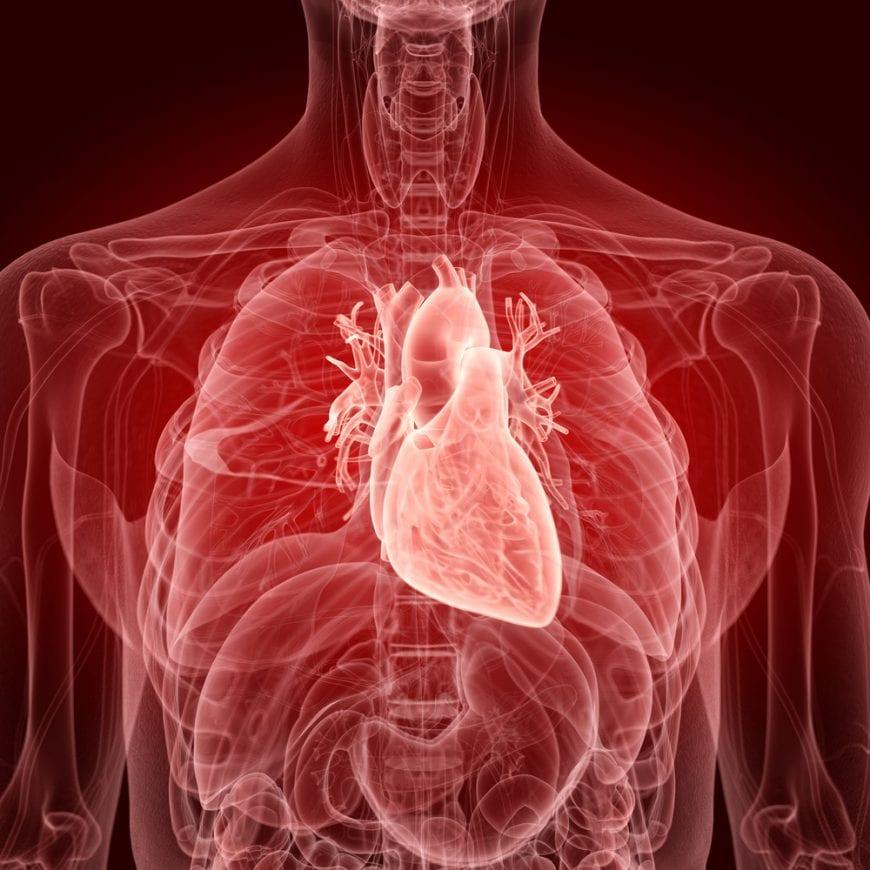 cannabis, heart health, medical cannabis, legalization, USA, FDA, CBD, glaucoma, anxiety, insomnia, OCD