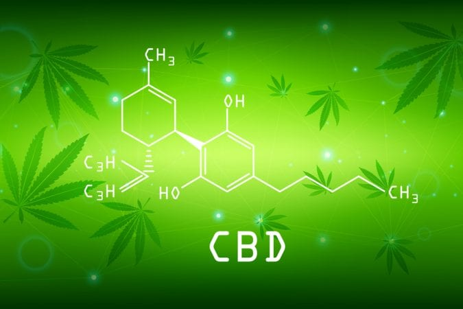 cannabis, CBD, cannabinoids, endocannabinoid system, epilepsy, anxiety, PTSD, OCD, insomnia, health benefits, medical cannabis