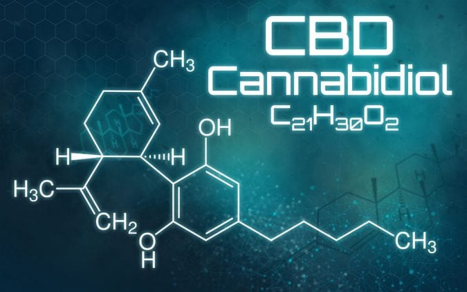 cannabis, CBD, THC, cannabinoids, endocannabinoid system, neurotransmitters, brains, neurons, legalization, medical cannabis
