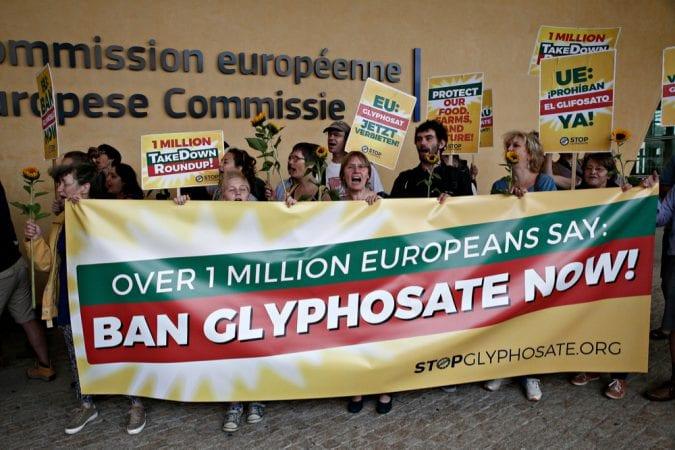 cannabis, Monsanto, glyphosate, Bayer, WHO, Johnson, cancer, carcinogenic, health risks, pesticides