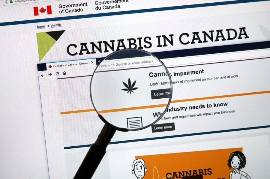 "cannabis in canada page where you might ask how to ""Clear My Record"""