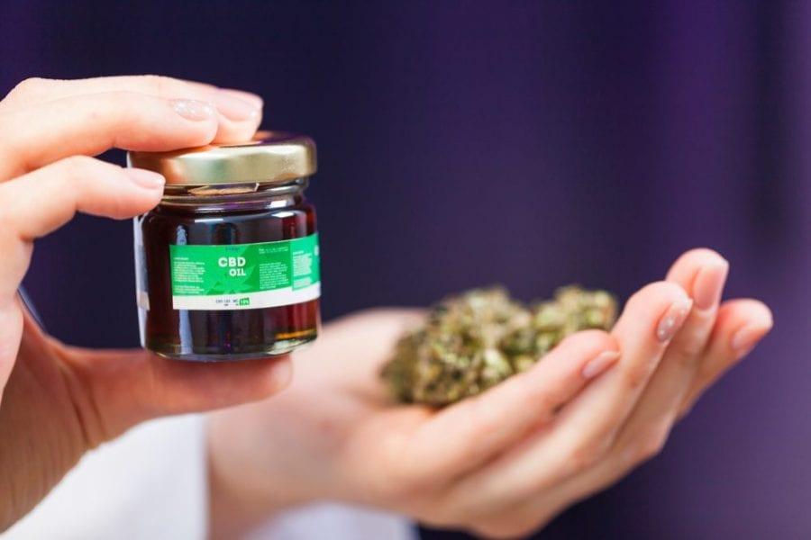 cannabis, sativa, hemp, marijuana, medical cannabis, recreational cannabis, CBD, THC, legalization, prohibition, cannabis plant, cannabis products