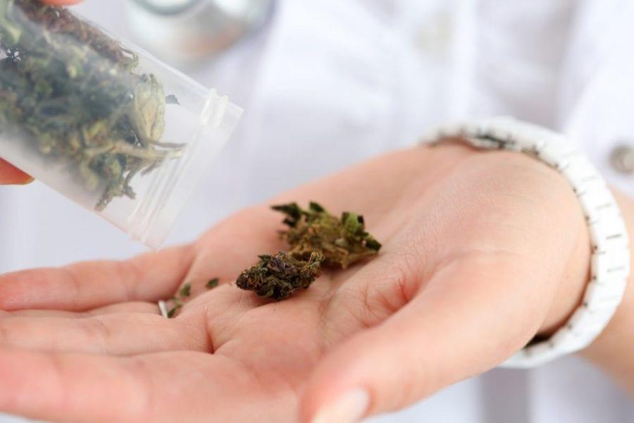 medical cannabis, cannabis, recreational cannabis, retailers, dispensary, legalization, prohibition, cannabis products, stigma, cannabis oils, research