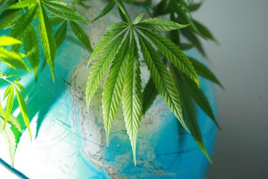 cannabis, global cannabis, legalization, prohibition, USA, Canada, Mexico, Europe, research, recreational cannabis