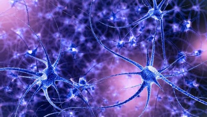 cannabis, medical cannabis, recreational cannabis, CBD, THC, cannabinoids, hippocampus, memory loss, regeneration, seizures, depression