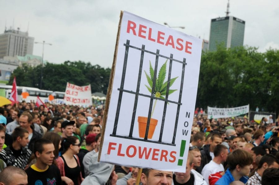 cannabis protest against prohibition propaganda: release the flower