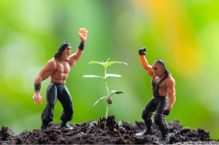 wrestler figures in a garden