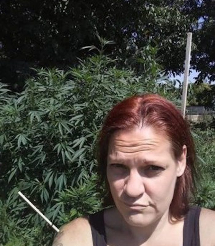 My Petit and Grand Mal Seizures Treated with Cannabis
