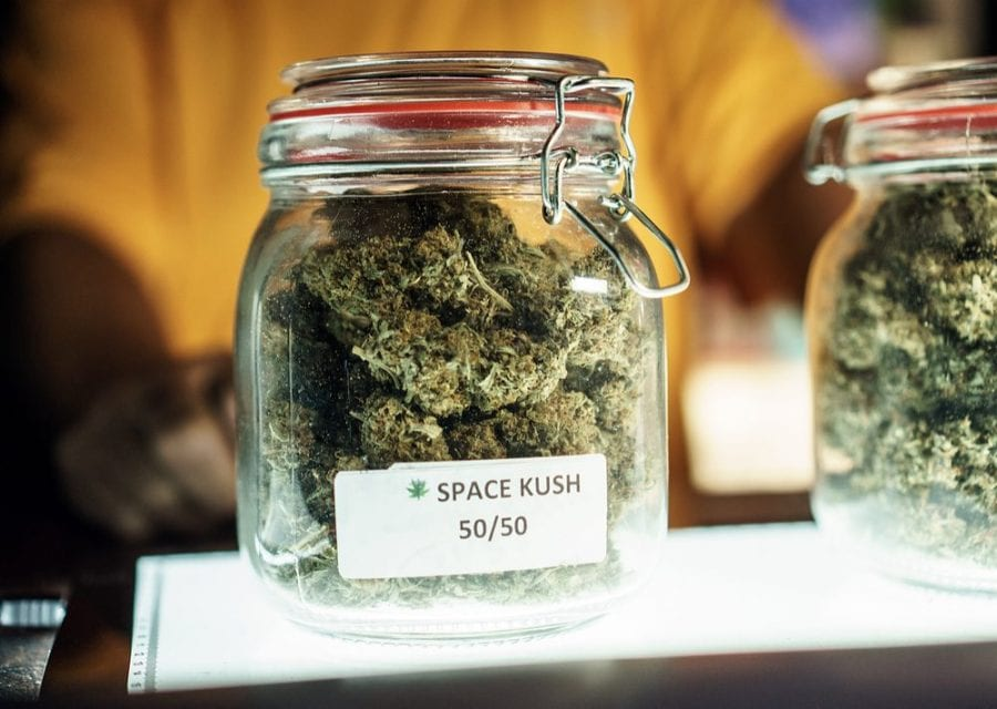 THC, high potency, cannabinoids, CBD, addiction, substance abuse, cannabis, medical cannabis, recreational cannabis, cannabis research, endocannabinoid receptors, glutamic acid, anandamide, space kush