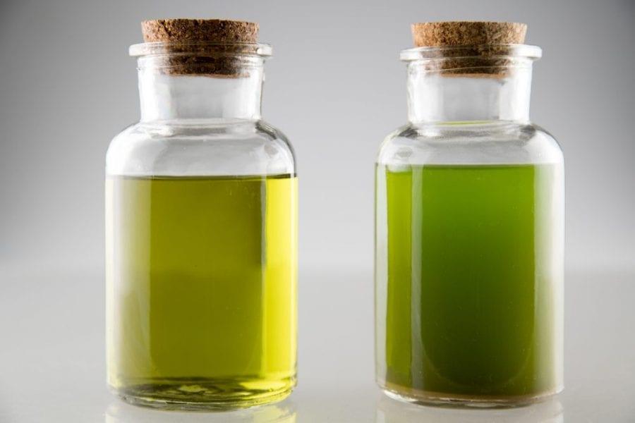 Cannabis Oil in Glass Jars