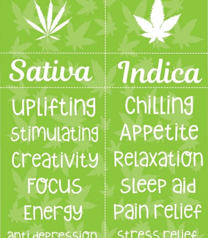 Indica Vs Sativa: Does it Mean Anything?