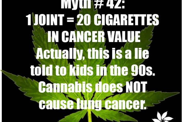smoking weed does not cause lung cancer