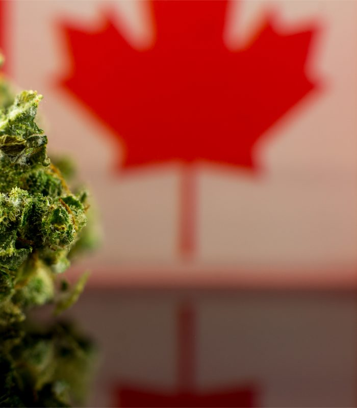 Canada Funds 14 New Studies To Support Cannabis Research