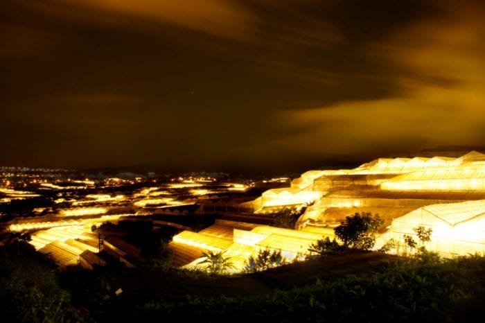 greenhouse light pollution