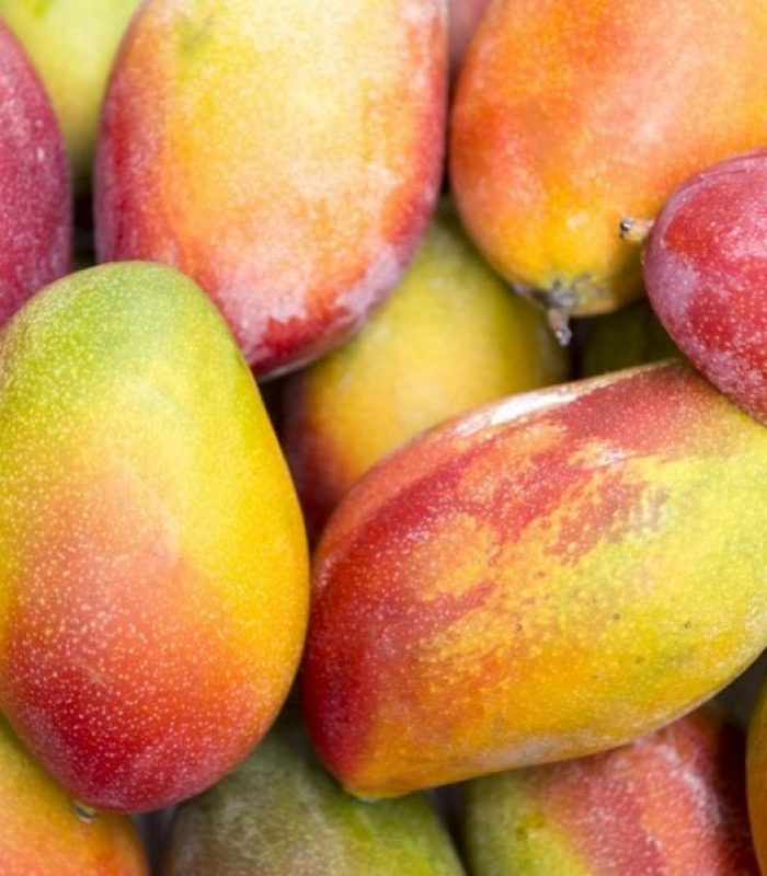 Do Mangos Really Increase Effects of THC?
